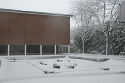 15-Winter Campus-1121-WD-070