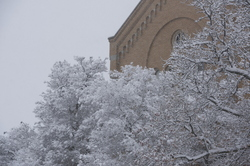 15-Winter Campus-1121-WD-179