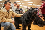 15-Therapy-Dogs-1208-ML-07