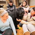 15-Therapy-Dogs-1208-ML-08
