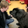 15-Therapy-Dogs-1208-ML-02