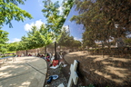 17-Campus and Forward Together Forward Gardens-0807-DG-009