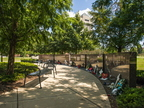 17-Campus and Forward Together Forward Gardens-0807-DG-017