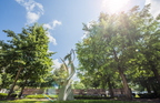 17-Campus and Forward Together Forward Gardens-0807-DG-022