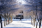 18- Campus Snow-0206-DG-046