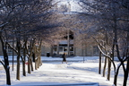 18- Campus Snow-0206-DG-047