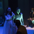 18-The Glass Menagerie-0206-WD-1156