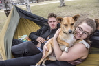 18-Nice Weather Hammock and Pets-0412-DG-023