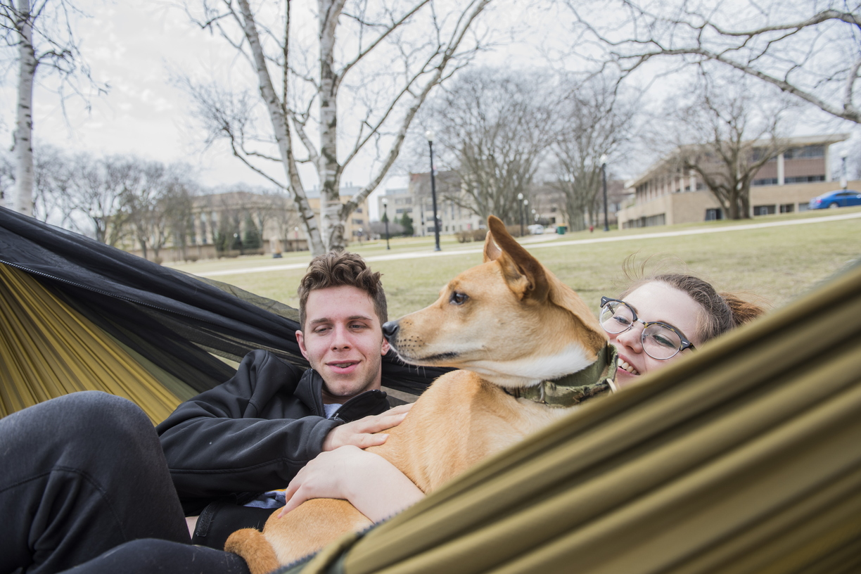 18-Nice Weather Hammock and Pets-0412-DG-040.jpg
