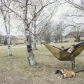 18-Nice Weather Hammock and Pets-0412-DG-041