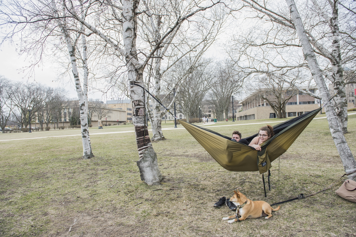 18-Nice Weather Hammock and Pets-0412-DG-041.jpg