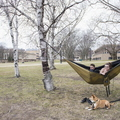 18-Nice Weather Hammock and Pets-0412-DG-042