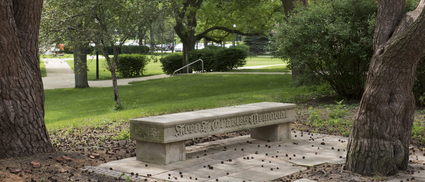 18-Campus-Kissing Bench-0529-WD-01