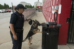 18-Officer York and Izzy-0906-WD-023