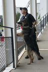 18-Officer York and Izzy-0906-WD-043