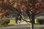 18-Fall Campus-1024-WD-13