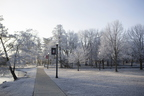 18-Campus-Frost-1210-SW-02