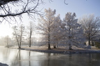 18-Campus-Frost-1210-SW-04