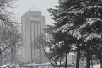 19-Snow_Campus-0123-WD-018.NEF