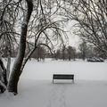 19 -Snow in Campus -0123-MZ001