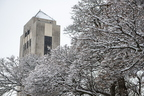 19 -Snow in Campus -0123-MZ004