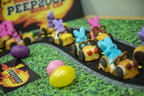 19-Sophia Peep Creation-Racetrack-0419-DG-013