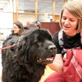 15-Therapy-Dogs-1208-ML-05